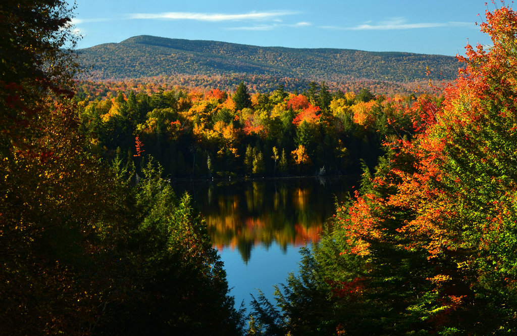 Picture of fall trees with a lake